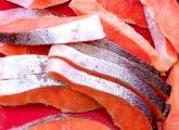 【塾長日記⑪】塩鮭の切り身と人生