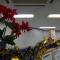 冬期講習会スタート!(そして、ちょっと早いけど)メリークリスマス!