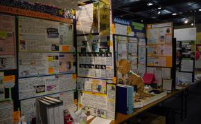 自由研究、どんなテーマにする??~富山県科学展覧会に行ってきました~